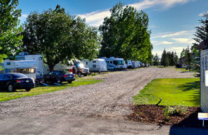 Wakeside Lake RV site amenities with lots of trees