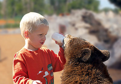 Boy bottle feeding bear cub at Yellowstone Bear World in Rexburg Idaho